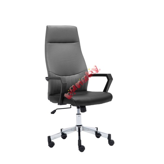 Student chair Spyder