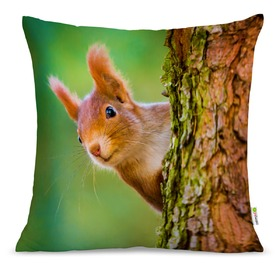 Pillow SQUIRREL 01