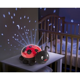 Ladybird Slumber Buddy, Summer Infant