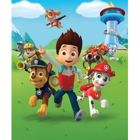 Paw Patrol 8-Panel Children's Wall Mural, Walltastic, Paw Patrol